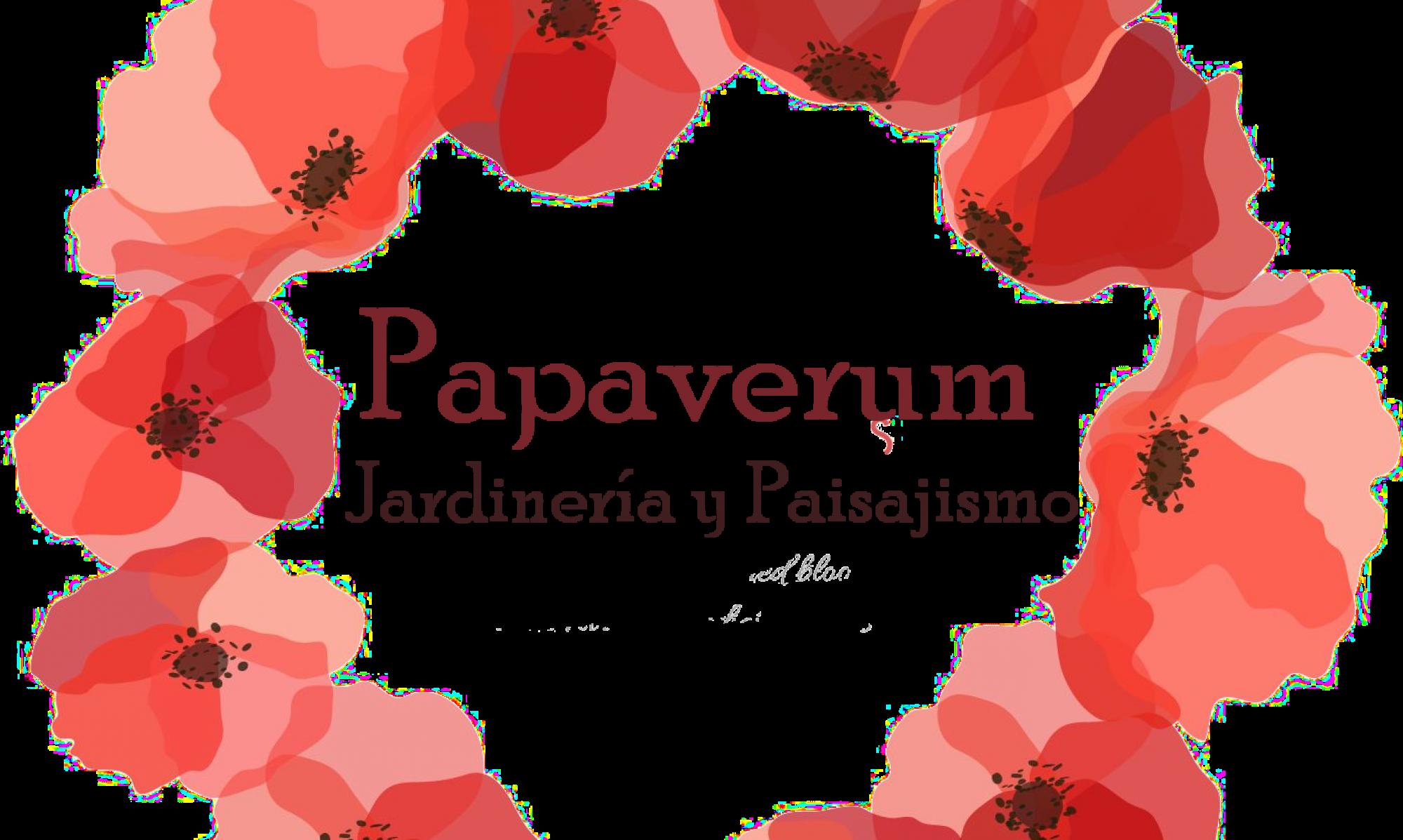 Papaverum