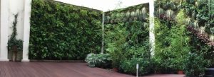 ejemplo de jardín vertical realizado en sphagnum